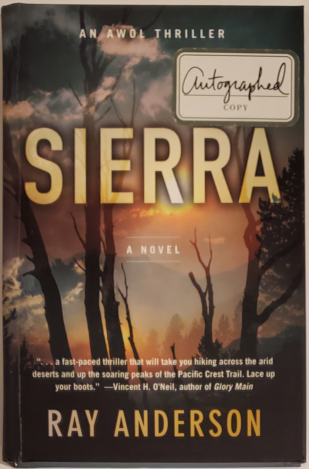 SIERRA. An AWOL Thriller. Ray Anderson.